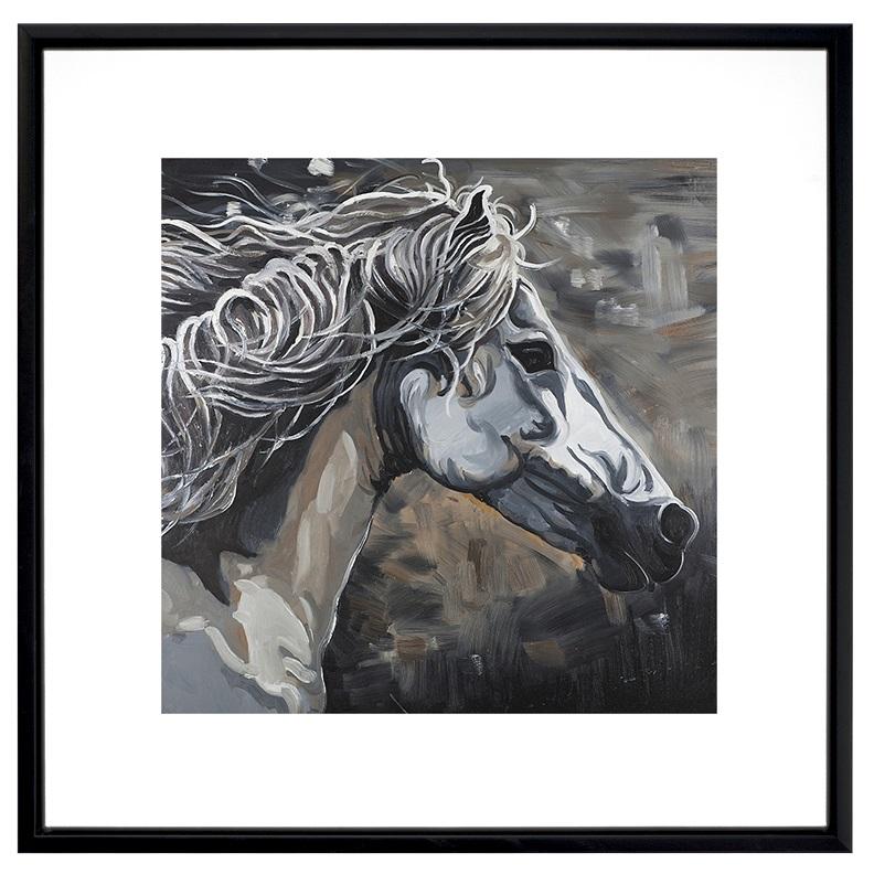 Profil d'un cheval sauvage